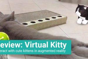Virtual Kitty – Game Review (iOS)