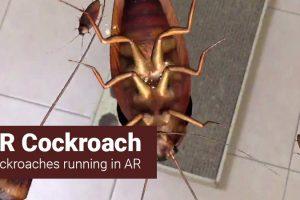 AR Cockroach – App Review (iOS)