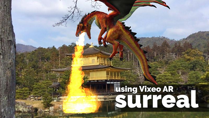 Dragon flying at Golden Pavilion, Kyoto, Japan
