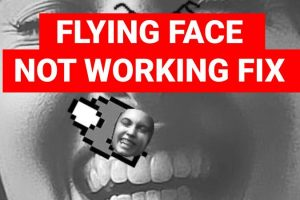 How to Fix Flying Face Filter Not Working on Instagram App?